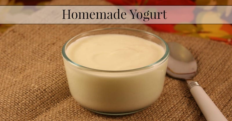 Homemade yogurt is a delicious and easy way to get both protein and ...