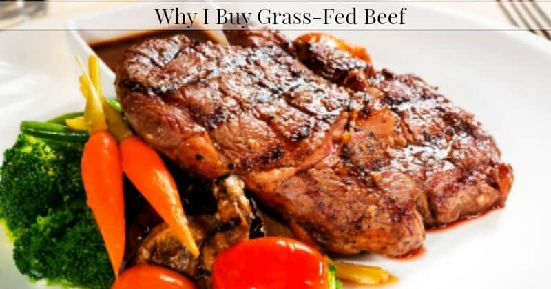 Why I Buy Grass Fed Beef