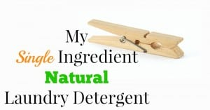My Single Ingredient Natural Laundry Detergent