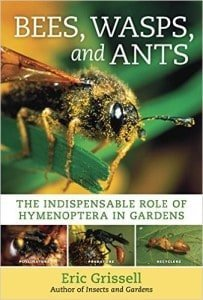 how to get rid of ants in pot plants australia