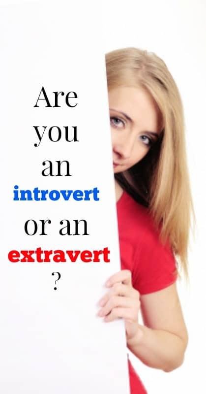 introvert or extravert pin