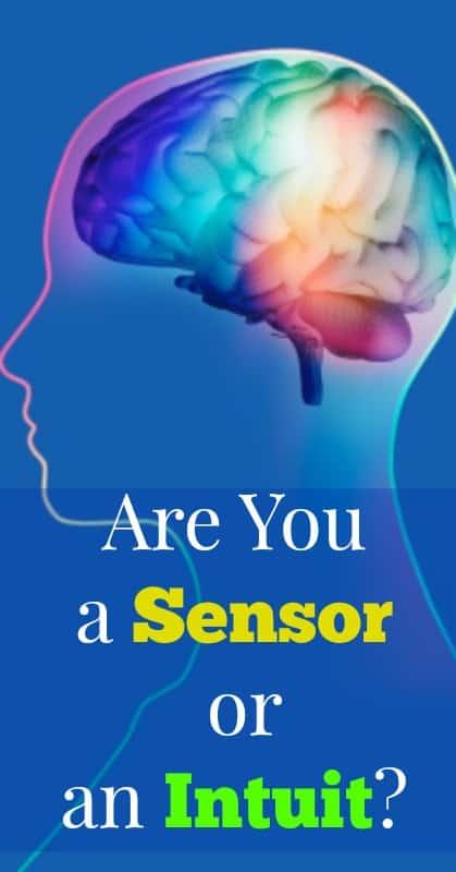 sensing or intuition pin