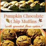 Pumpkin Chocolate Chip Muffins Made With Sprouted Flour