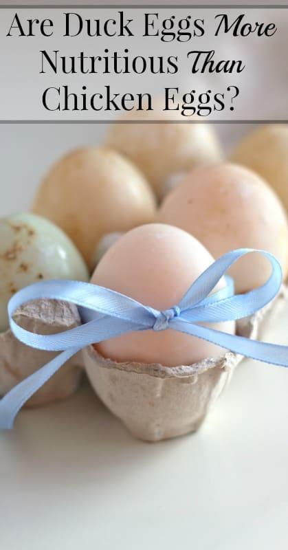 Duck Eggs Versus Chicken Eggs