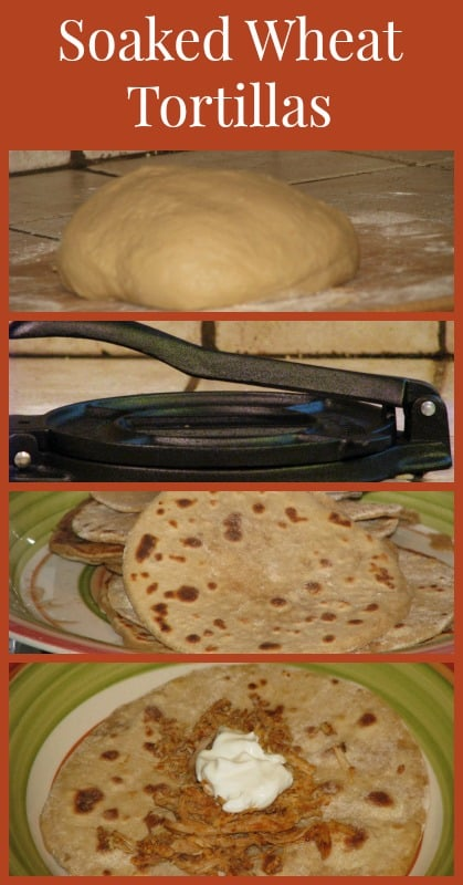 Soaked Wheat Tortilla pin