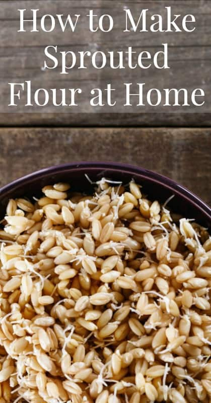 How to Make Sprouted Flour at Home