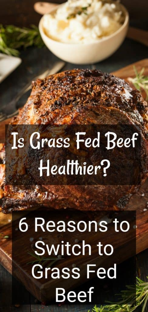 Is Grass Fed Beef Really Better