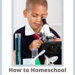 How to Homeschool First Grade for Free