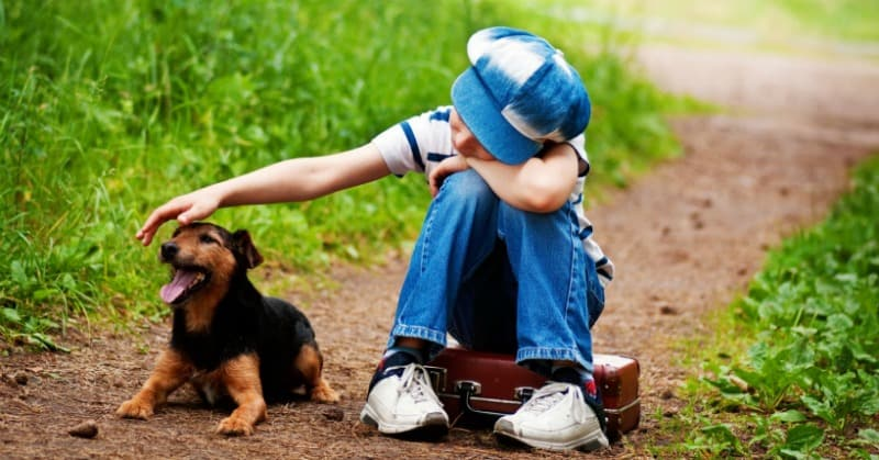 How to Help Children With Pet Loss