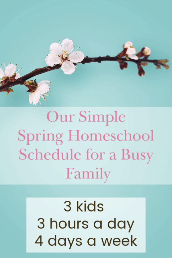 A Simple Homeschool Schedule for a Busy Family