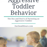 Parenting an Aggressive Toddler